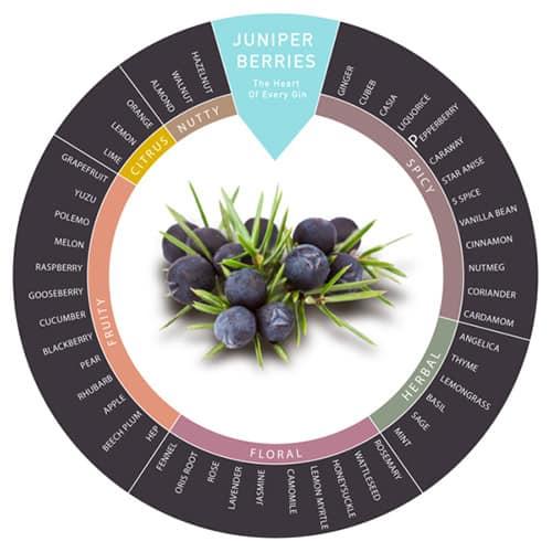 Gin Botanicals Wheel